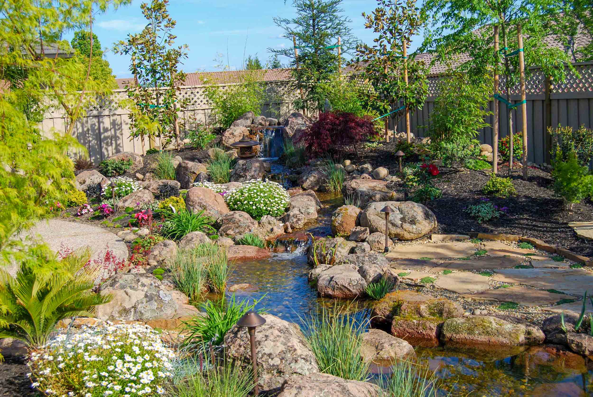 Koi Pond & Waterfall Backyard - Executive Care Inc